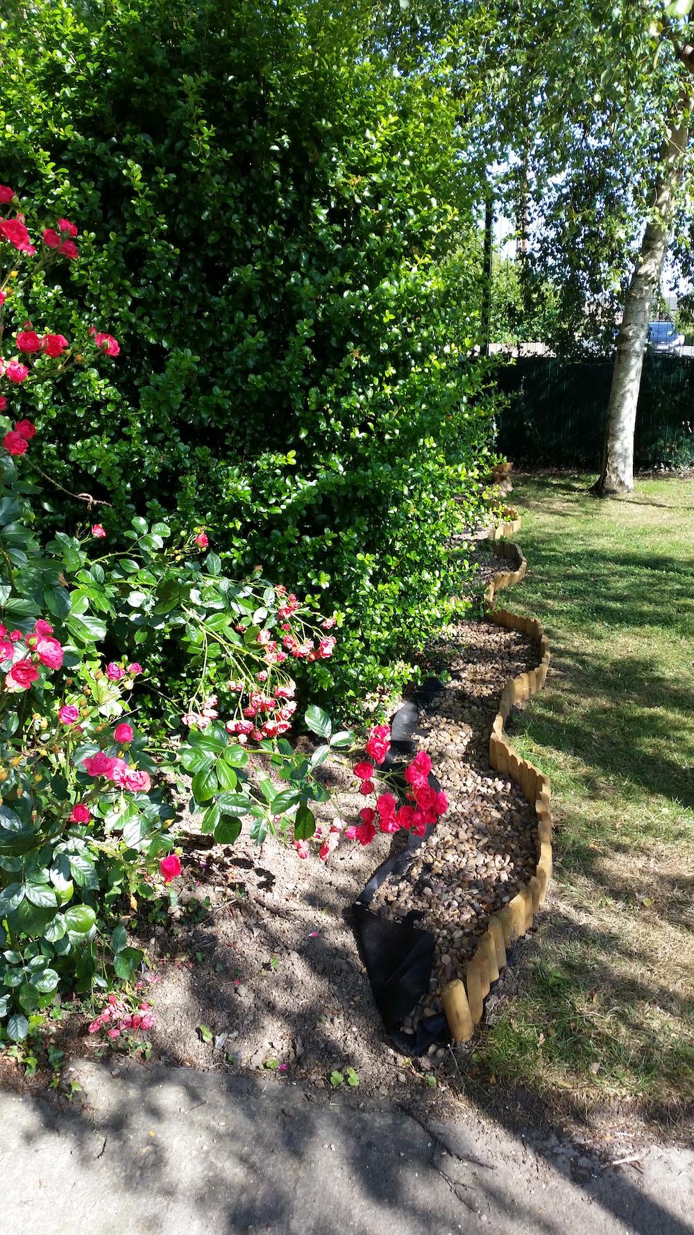 Sower's garden in the making