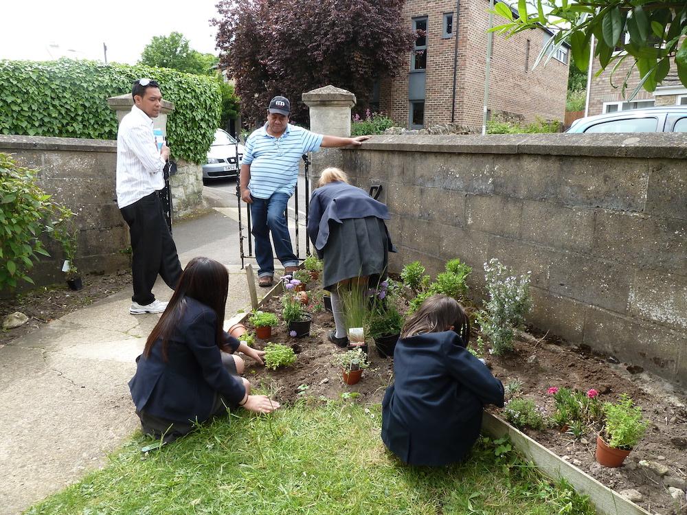 weeding the garden Cornerstone sm
