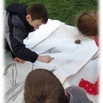 collaborative tree drawing